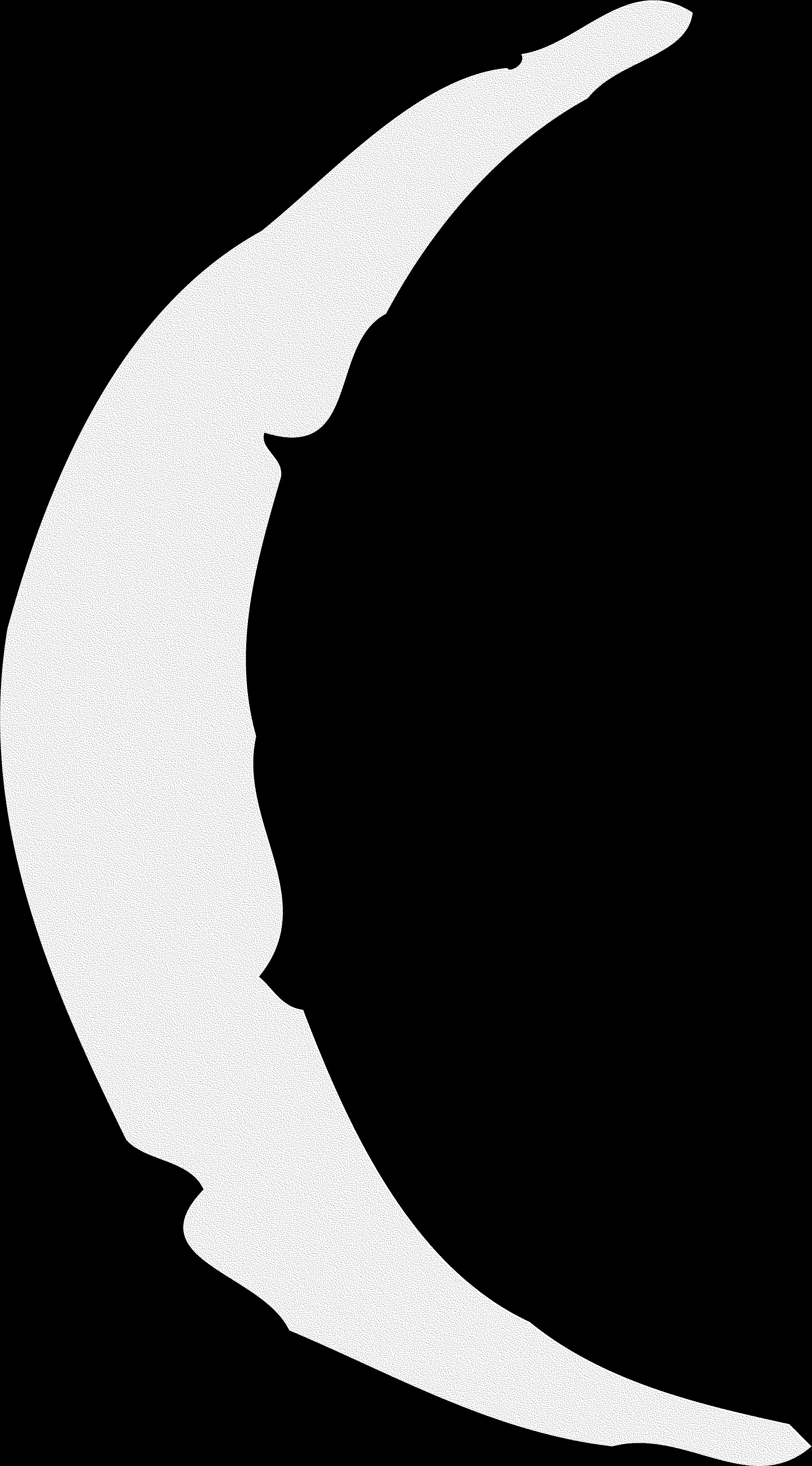 Theurge Glyphe